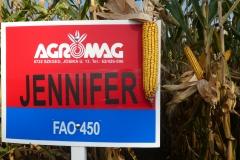 Jennifer (FAO 450)