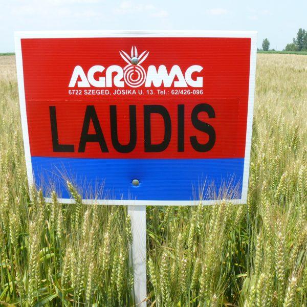 Farmer Agro bemutató Telekg 017 Laudis