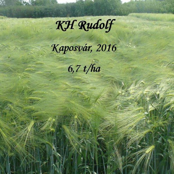KH Rudolf Kaposvár 2016