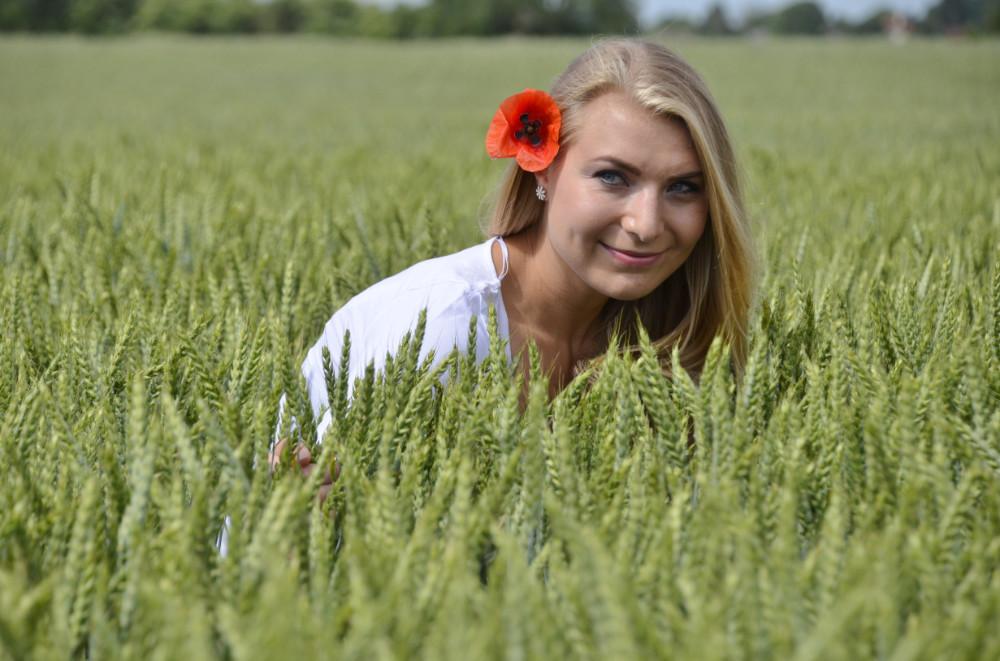 3.kép: A gyönyörű Steffi kalásztengere