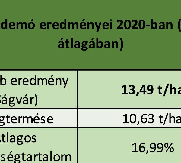 Beata - (FAO 330) demó eredményei 2020-ban