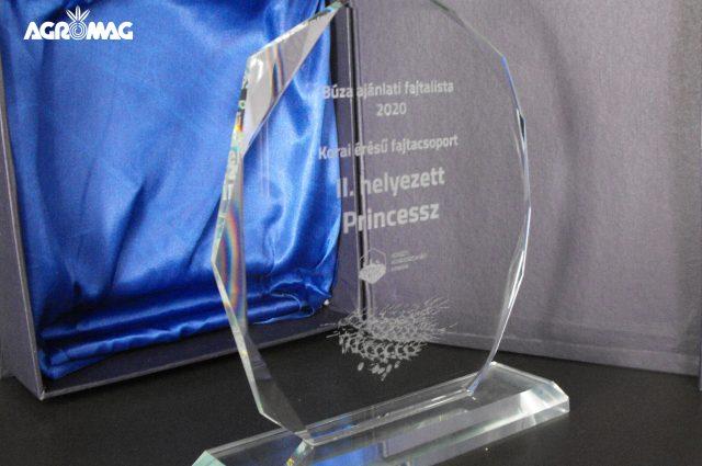Princessz díj NAK II. díj