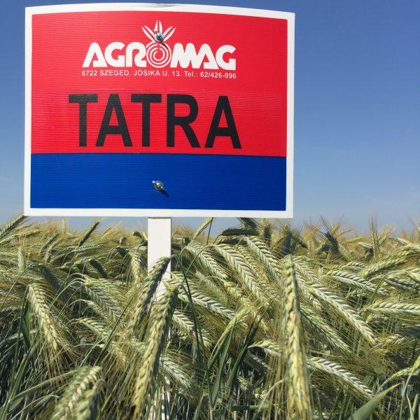 Tatra jánoshalmi bemutató